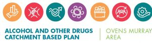 Alcohol and Other Drugs Catchment Based Plan image